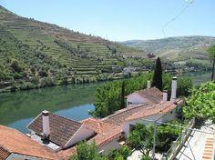 Portugal: Quinta de la Rosa in Pinhao by the Douro river
