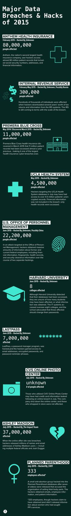 The Biggest Data Breaches Of 2015 So Far, In One Incredibly Alarming Infographic | Bustle