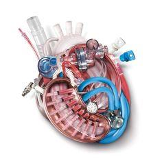 """Nurse's Day Heart"" by Nicole Manojlovic"