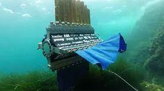 L'imitazione è la forma più alta di ammirazione.   Watch a four-finned robot fish swim in any direction
