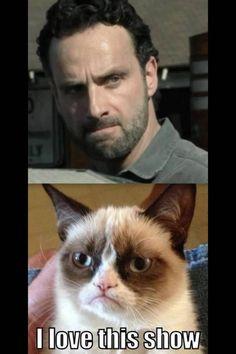 Even grumpy cat loves the Walking Dead