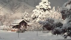 Fresh Snow,  Mapleton, Utah  This is right out of a Norman Rockwell print.... Miss the snow!