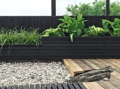 If you are working with the best backyard pool landscaping ideas there are lot of choices. You need to look into your budget for backyard landscaping ideas Diy Pergola, Pergola Kits, Pergola Carport, Cheap Pergola, Pergola Designs, Pergola Curtains, Small Pergola, Mosquito Curtains, Metal Pergola