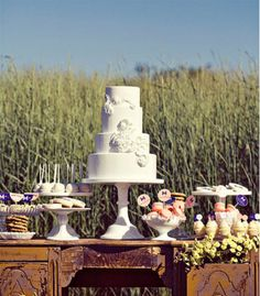 dessert table in the middle of a field ftw