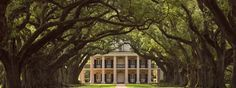Visited here years ago, when we discovered it as we drove along River Road, however we were not able to go inside the grounds, since it was too late in the day,...would like to visit again someday and take the tour of inside and the grounds: Oak Alley Plantation: Antebellum Mansion, Historic Grounds, Restaurant & Inn