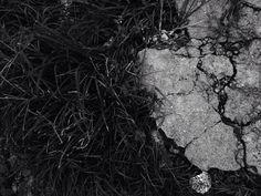 Contraste de tema por Cecilia Nannini 8anod Nessa imagem pode se ver que existe uma grande diferença entre os temas, a grama de uma lado e o asfalto de outro. Costeira muito dessa foto também, porque nós pensar que até as coisas mais distantes podem estar juntas.