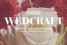 Wedcraft Wedding Photoshop Actions by FilterGrade on Creative Market