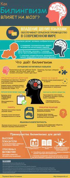 Как билингвизм влияет на мозг Источник: http://wiseparents.ru/kak-bilingvizm-vliyaet-na-mozg/
