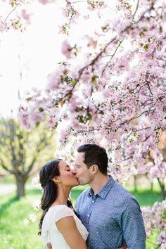 Apple Blossom Engagement Photographs in Ottawa. Photography: Grace & Gold Studio