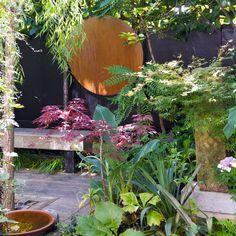 Ontwerper Spencer Viner maakte van zijn kleine tuin een waar paradijs: met weelderige siergrassen uit China en Japan en de beste bamboe. Garden Yard Ideas, Clematis, Beautiful Gardens, Garden Design, Roof Top, Patio, Balcony, Helpful Hints, Organize