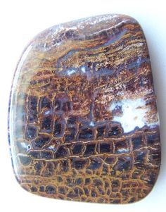 Blue Forest Petrified wood Gemstone Cabochon 7076