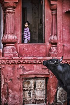 India my love . - India my love . - India my love …. – India my love …. Street Photography, Travel Photography, Indian Colours, Les Continents, Amazing India, India Culture, Indian Architecture, India People, Cultural