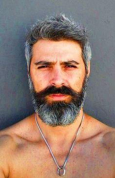 Different Beard Styles, Moustaches, Hair And Beard Styles, Grey Hair, Silver Man, Bearded Men, Studs, Workout, Lifestyle