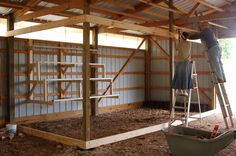 roosts; chicken coop inside barn