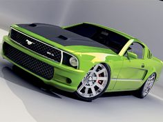 oh for the love of green mustangs