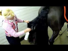 HORSES- Educational /Grooming The Horse's Tail