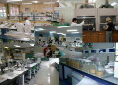 Laboratorios quimicos.