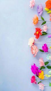 خلفيات ايفون ورد جميلة جدا Iphone Flower Background Iphone Wallpaper Flower Backgrounds Mobile Wallpaper
