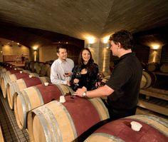 Craggy Range cellar, Hawke's Bay