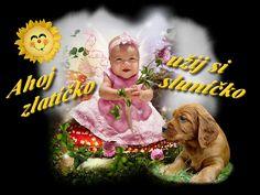Teddy Bear, Night, Birthday, Animals, Fotografia, Birthdays, Animales, Animaux, Teddy Bears