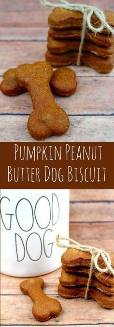 Healthy Dog Treats Homemade Pumpkin Peanut Butter Dog Biscuit Recipe- This Easy Homemade Dog Biscuit recipe is perfect for your dog. What dog wouldn't love Peanut Butter dog biscuits. Dog Biscuit Recipe Easy, Dog Biscuit Recipes, Dog Food Recipes, Easy Dog Treat Recipes, Easy Snacks, Easy Recipes, Homemade Dog Cookies, Homemade Dog Food, Homemade Biscuits