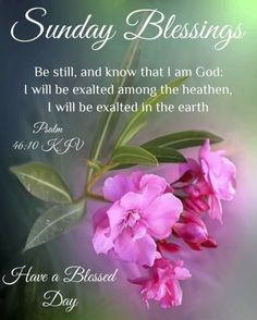 Blessed Sunday Messages, Blessed Sunday Morning, Sunday Morning Quotes, Sunday Wishes, Have A Blessed Sunday, Morning Wishes Quotes, Happy Sunday Quotes, Good Morning Prayer, Good Day Quotes