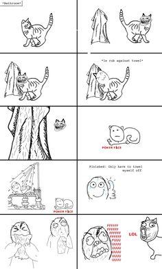 LOL cat is my FAV!