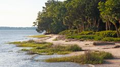 The South's Most Under-the-Radar Beaches | No crowds? No problem. As much as we love the bustling beaches of the South, the likes of South Carolina's Hilton Head, Florida's Seaside, and Georgia's St. Simons Island, sometimes we just want to kick it and relax. There's something refreshing about picking a spot where the beaches aren't quite so crowded, the seafood is freshly caught as a rule, and those old beach chairs you're sitting on might be just a little bit rusty.