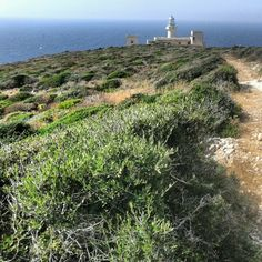 Lighthouse in Levanzo, Aegadian islands, Sicily