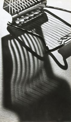 Andre Kertesz - King Salamon (Still Life)