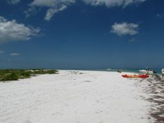 Our latest trip to the Tampa area took us to the turquoise waters and beautiful sandy beach of Caladesi Island for a morning of kayaking, beach combing and wildlife viewing.