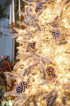 FRENCH COUNTRY COTTAGE: simple flocked tree with lights and pinecones
