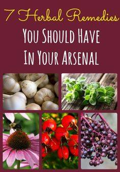 Knowing how to use herbal remedies will help ensure health and wellness following an emergency when traditional drugs are not available. Here are 7 herbs along with specific directions for using them.  via www.BackdoorSurvival.com