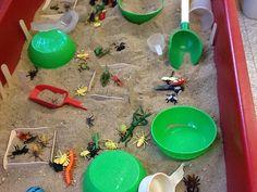 "Sand, lolly sticks & minibeasts ("",)"