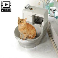 Pet Supermarket Self Cleaning Cat Litter Box
