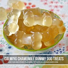 Calming chamomile gelatin gummy dog treat recipes for pet stress, anxiety, travel, and more. Turn chamomile tea into yummy treats that are portable and easily served in small portions. Puppy Treats, Diy Dog Treats, Homemade Dog Treats, Healthy Dog Treats, Dog Biscuit Recipes, Dog Treat Recipes, Dog Food Recipes, Frozen Dog Treats, Pastries