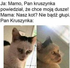 Wszystkie memy z neta :v # Humor # amreading # books # wattpad True Memes, Cat Memes, Dankest Memes, Jokes, Funny As Hell, Haha Funny, Hilarious Memes, Funny Gaming Memes, Cool Pictures