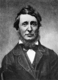 An poster sized print, approx (other products available) - Henry David Thoreau - American essayist and poet. Original Publication: People Disc - (Photo by Hulton Archive/Getty Images) - Image supplied by Fine Art Storehouse - Poster printed in Australia Henry David Thoreau, Ap Language, English Language, Fine Art Prints, Canvas Prints, Essayist, Portraits, Heritage Image, Poster Size Prints
