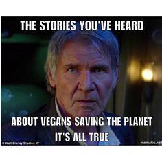 #eco #vegan #truth