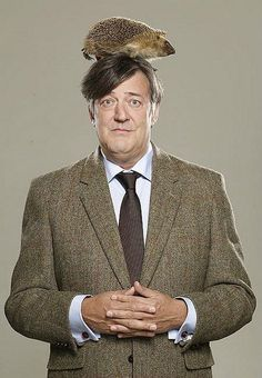 Stephen Fry with a hedgehog on his head. Your argument is invalid. (Also, now I want someone to slash Martin Freeman's John with Stephen Fry's Mycroft. British Comedy, British Actors, Mode Bizarre, Hugh Laurie, People Of Interest, Cinema, Vogue, Funny People, Comedians