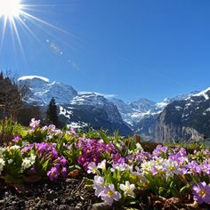 Wengen Switzerland - spring is coming Photo by Rolf Wegmueller -- National Geographic Your Shot