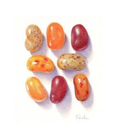 Autumn Jelly Beans / Jelly Bean PRINT / Candy Art / Candy Print / Colored Pencil Art / Food Art