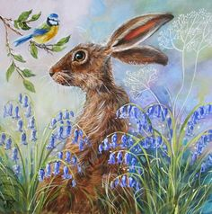 """""""Blue Bell Hare"""" by Judith Yates Bird Drawings, Animal Drawings, Hare Pictures, Hare Illustration, Bunny Painting, Rabbit Art, Bunny Art, Beautiful Fantasy Art, Tea Art"""