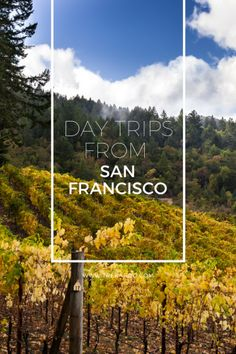 Here are some of the best family friendly day trips from San Francisco and the approximate driving time for reaching them. via @trekaroo