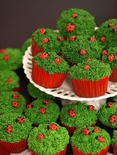 Ladybug cupcakes, so adorable