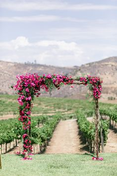 Add a beautifully bright magenta floral arch to give some colour to your Vineyard wedding backdrop. Magenta Wedding, Floral Wedding, Wedding Flowers, Wedding Altar Decorations, Arch Decoration, Wedding Centerpieces, Bougainvillea Wedding, Rustic Arbor, Wedding Ideias