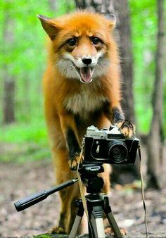 Say cheese mae❤❤