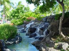 Google Image Result for http://www.sxc.hu/pic/m/d/ds/dsmasters/37424_tropical_waterfall.jpg