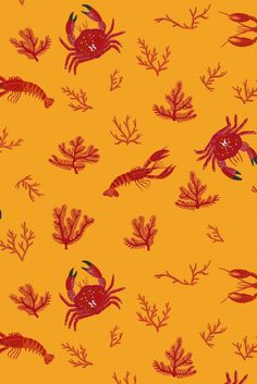 Snappy wallpaper design by Coordonne called Crustaceos featuring crabs and lobsters. Mustard Wallpaper, Neutral Wallpaper, Red Wallpaper, Blue Wallpapers, Colorful Wallpaper, Fish Wallpaper Iphone, Pattern Art, Print Patterns, Pug