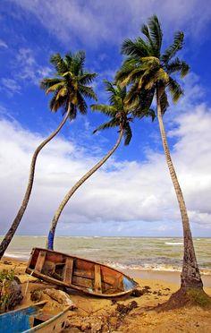 Las Terrenas beach, Samana peninsula       Dominican Republic Free Travel Guide